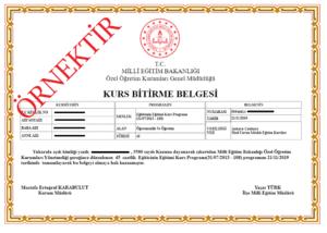 egiticinin egitimi sertifikası